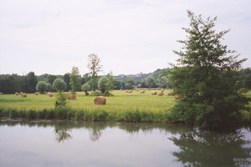 Rolls of hay in canalside fields